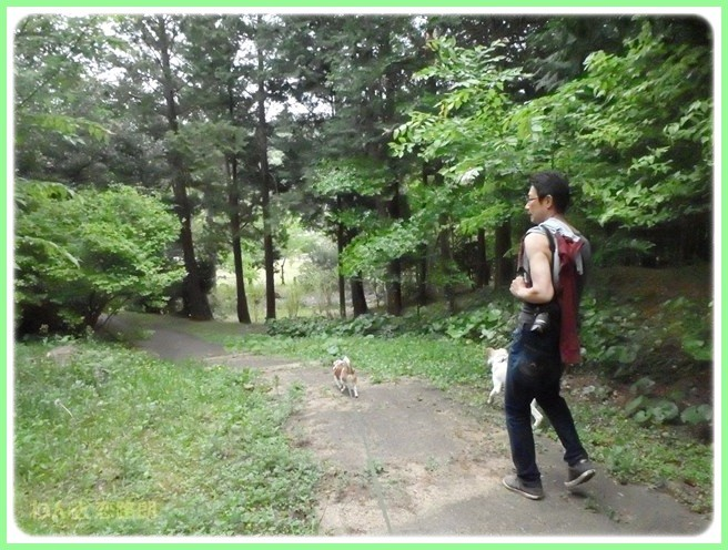 f:id:yasukazu01:20150504230109j:image
