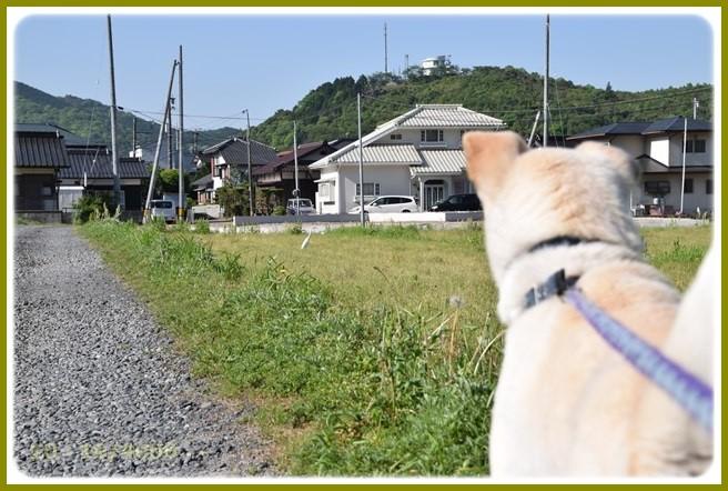 f:id:yasukazu01:20150505220622j:image