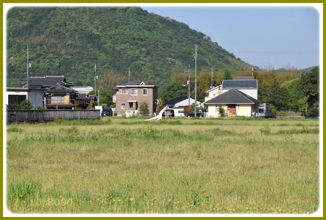 f:id:yasukazu01:20150505220810j:image