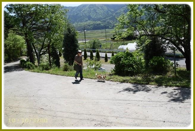 f:id:yasukazu01:20150505224046j:image