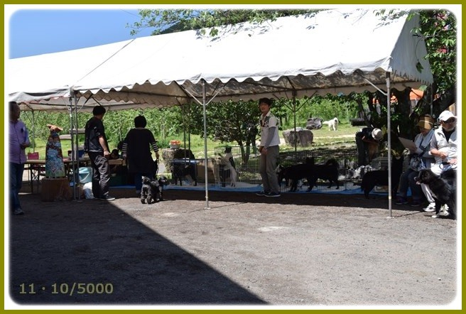 f:id:yasukazu01:20150506211734j:image