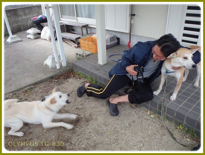 f:id:yasukazu01:20150510234432j:image
