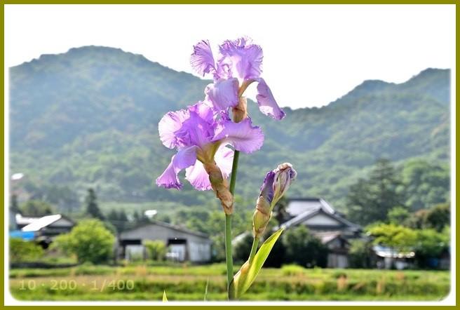 f:id:yasukazu01:20150512105734j:image