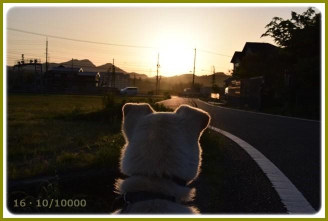 f:id:yasukazu01:20150513225910j:image