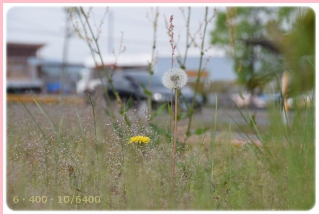 f:id:yasukazu01:20150515210440j:image