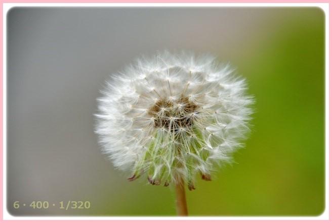 f:id:yasukazu01:20150515210627j:image
