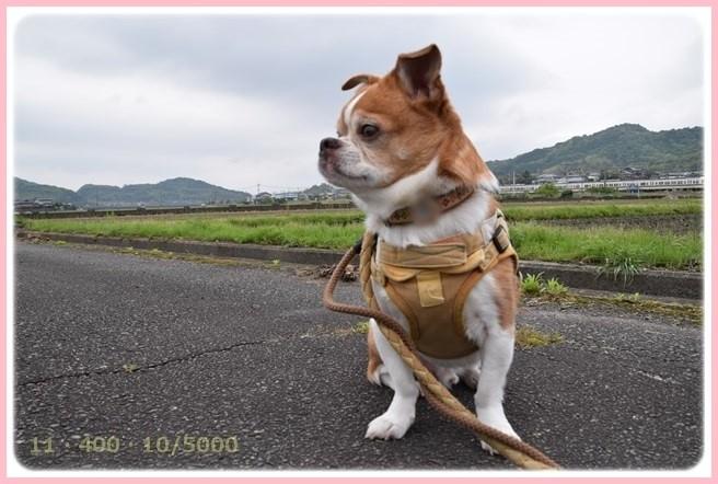 f:id:yasukazu01:20150516202613j:image