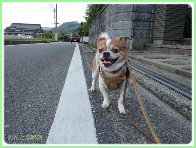 f:id:yasukazu01:20150518224745j:image
