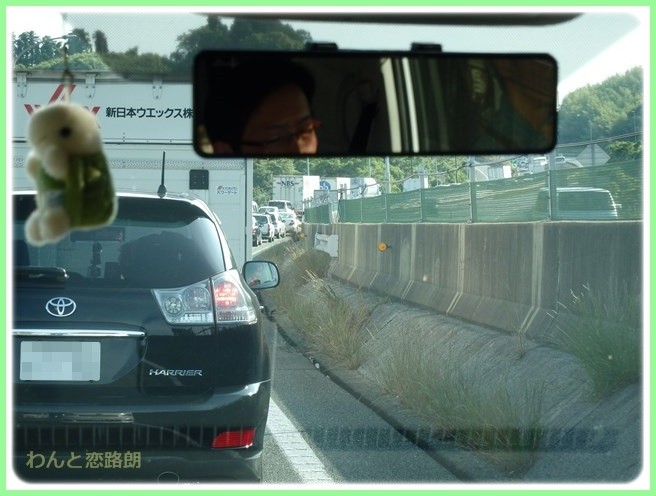 f:id:yasukazu01:20150524221307j:image