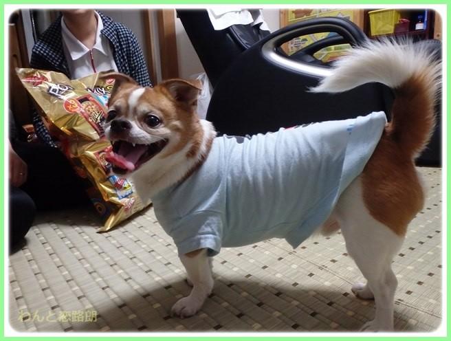 f:id:yasukazu01:20150526222828j:image