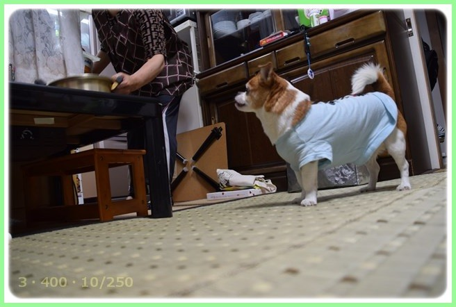 f:id:yasukazu01:20150527225016j:image