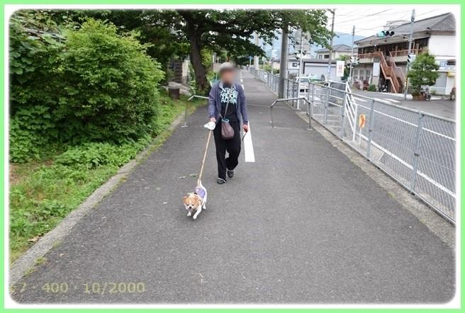 f:id:yasukazu01:20150527225824j:image