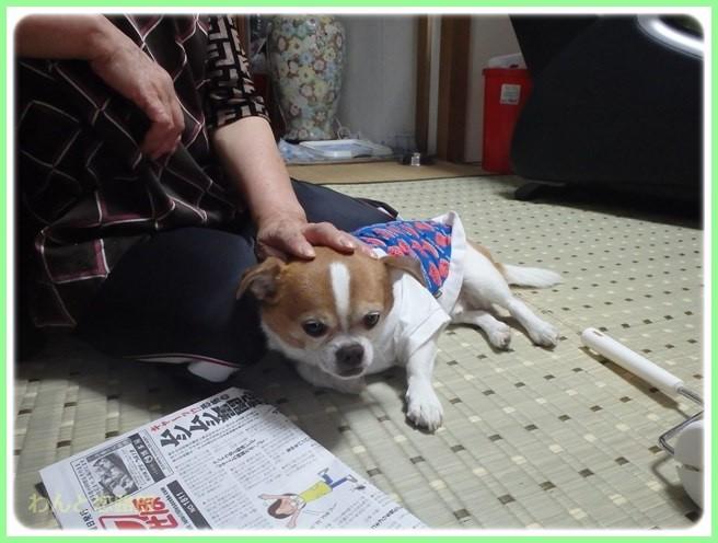 f:id:yasukazu01:20150528200257j:image