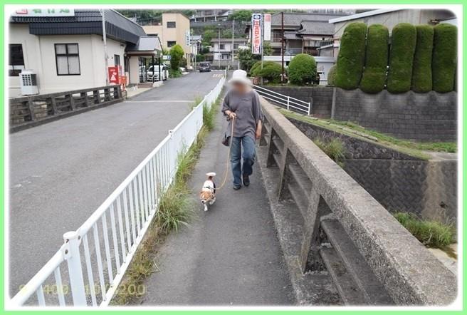 f:id:yasukazu01:20150530195841j:image