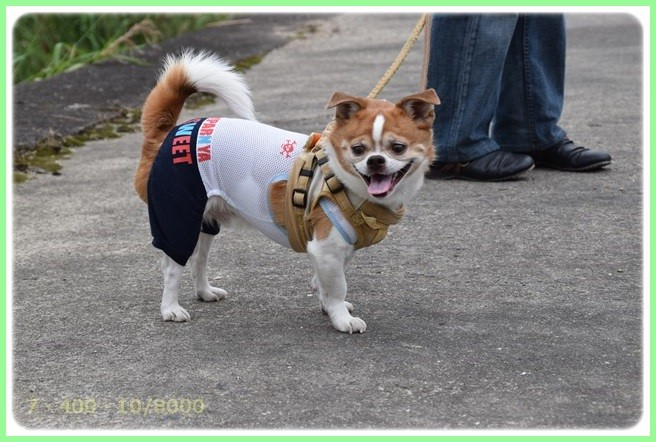 f:id:yasukazu01:20150530195842j:image