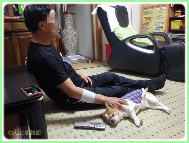 f:id:yasukazu01:20150530195851j:image