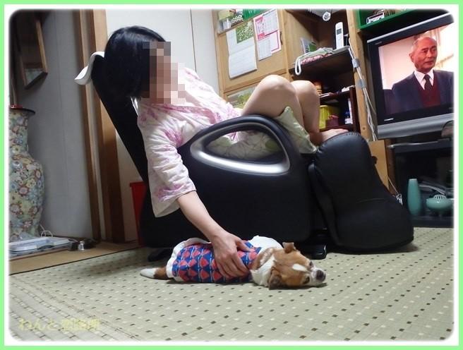 f:id:yasukazu01:20150530195852j:image