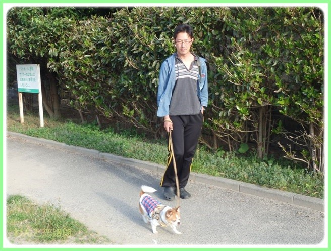 f:id:yasukazu01:20150531225345j:image