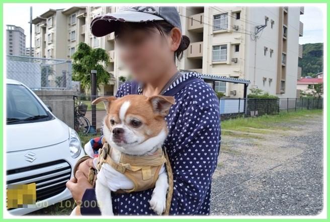 f:id:yasukazu01:20150531225352j:image
