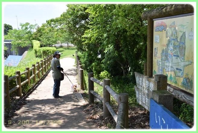 f:id:yasukazu01:20150601205814j:image