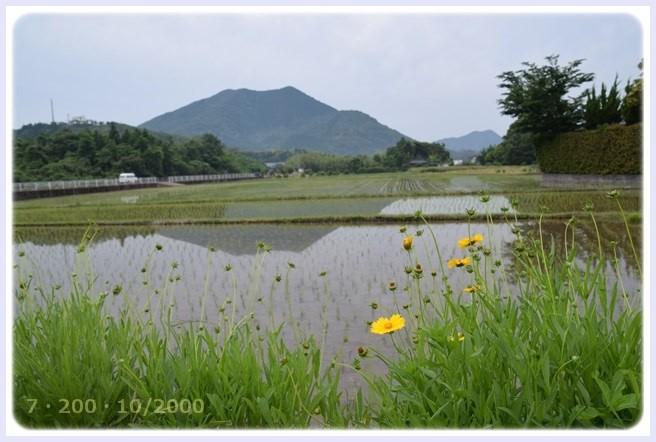 f:id:yasukazu01:20150603230614j:image