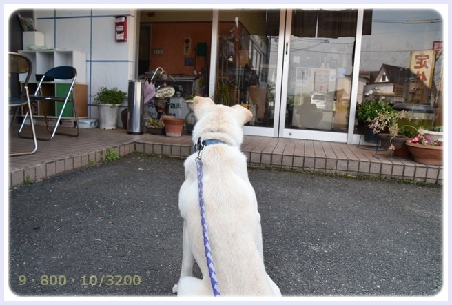 f:id:yasukazu01:20150604221451j:image
