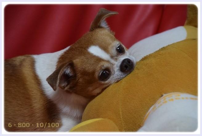 f:id:yasukazu01:20150605224235j:image