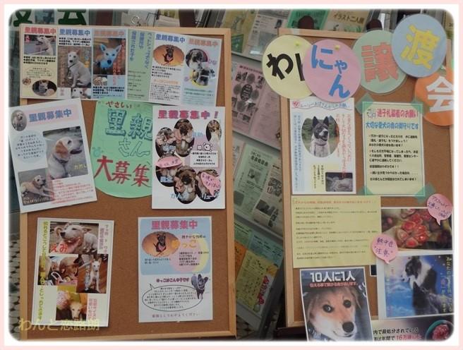 f:id:yasukazu01:20150607211052j:image