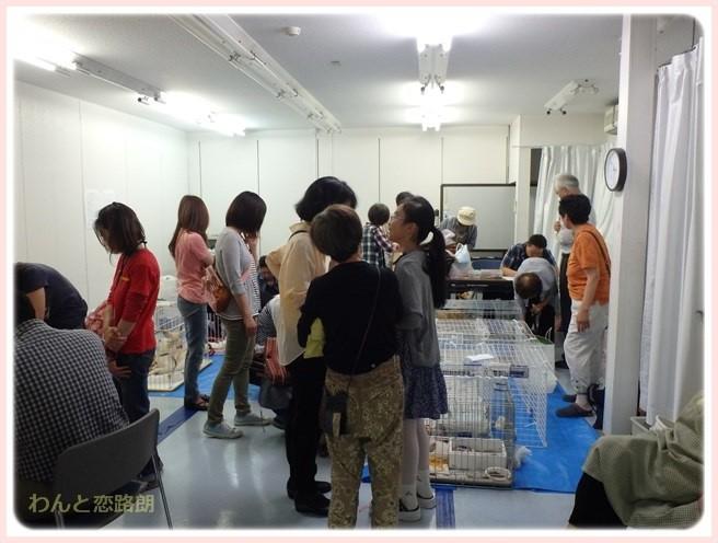 f:id:yasukazu01:20150608211258j:image