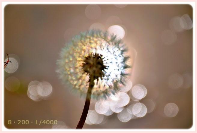f:id:yasukazu01:20150609224502j:image