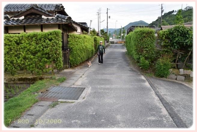 f:id:yasukazu01:20150611220727j:image