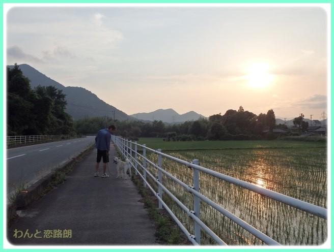 f:id:yasukazu01:20150614225505j:image