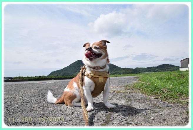 f:id:yasukazu01:20150620211948j:image