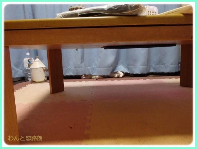 f:id:yasukazu01:20150622212524j:image