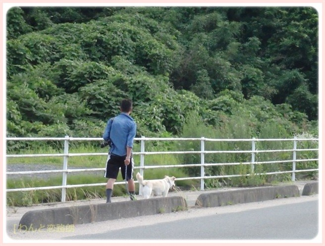 f:id:yasukazu01:20150629224929j:image
