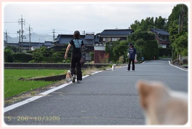 f:id:yasukazu01:20150702213616j:image