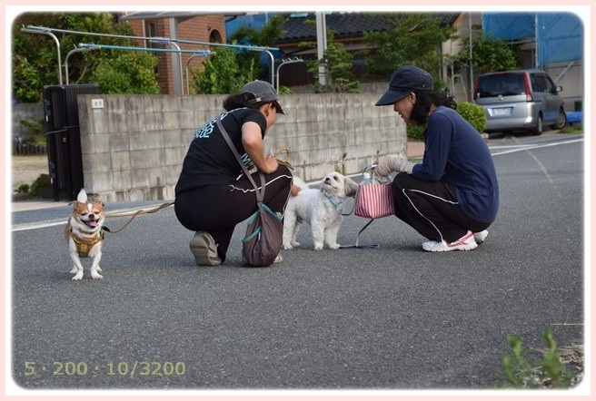 f:id:yasukazu01:20150702213730j:image