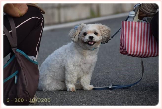 f:id:yasukazu01:20150702214231j:image