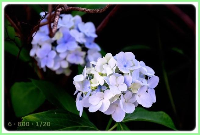 f:id:yasukazu01:20150706202741j:image