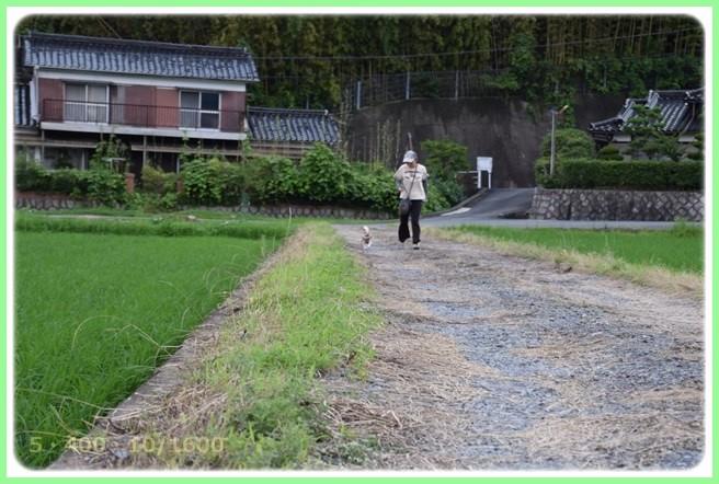 f:id:yasukazu01:20150709204609j:image