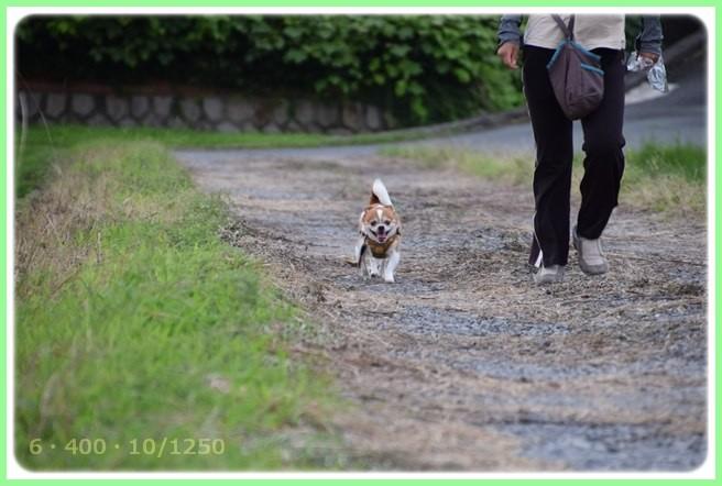 f:id:yasukazu01:20150709204931j:image