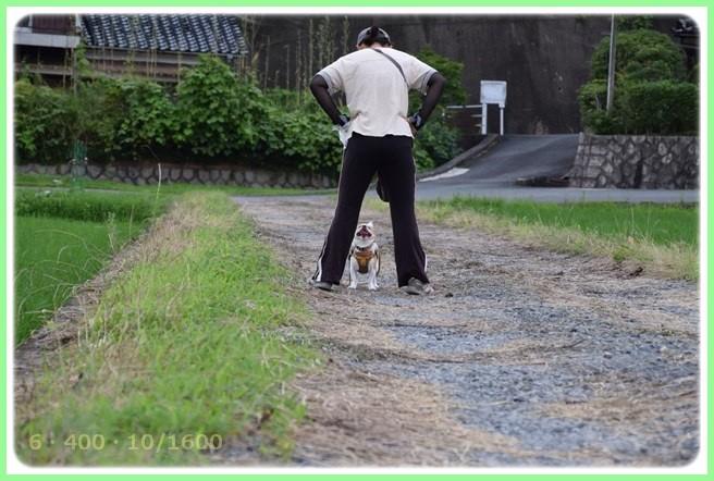 f:id:yasukazu01:20150709205002j:image