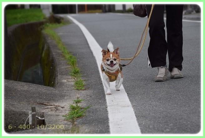 f:id:yasukazu01:20150709205058j:image