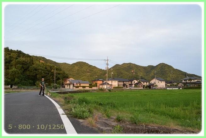 f:id:yasukazu01:20150712195551j:image