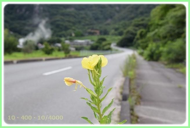 f:id:yasukazu01:20150718204650j:image