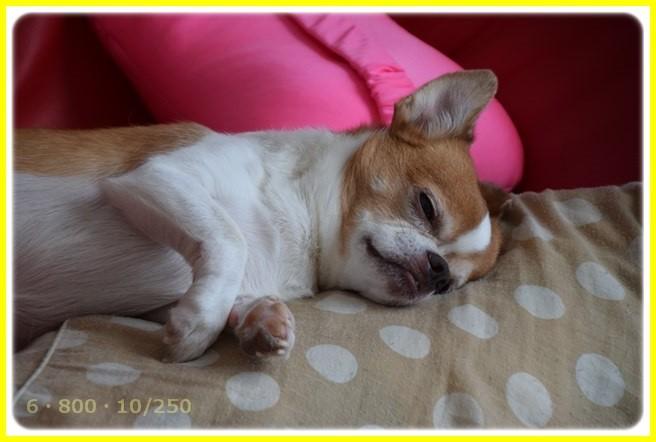 f:id:yasukazu01:20150727215116j:image