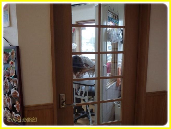 f:id:yasukazu01:20150728202411j:image