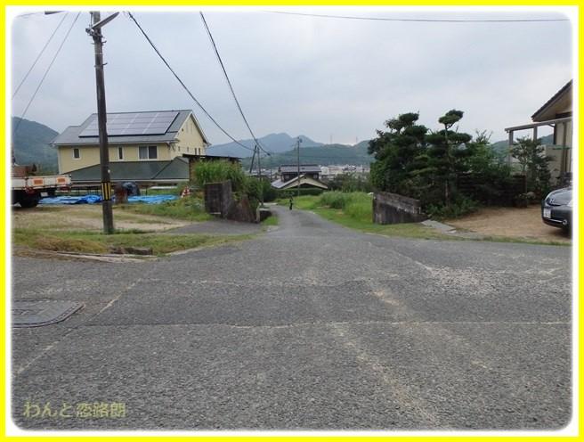 f:id:yasukazu01:20150731223146j:image