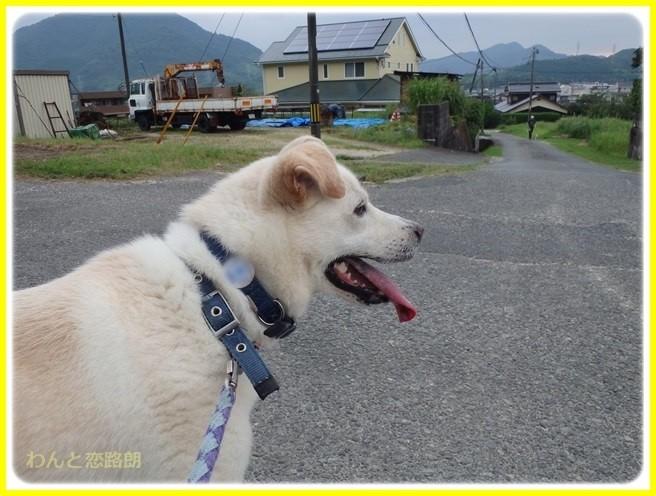 f:id:yasukazu01:20150731223214j:image