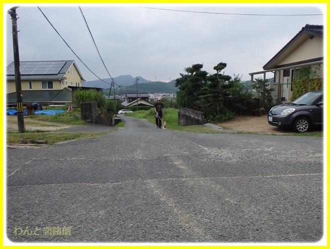 f:id:yasukazu01:20150731223440j:image